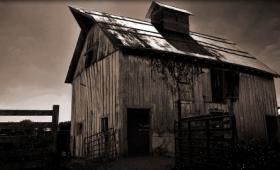 Haunted Hollow – Website